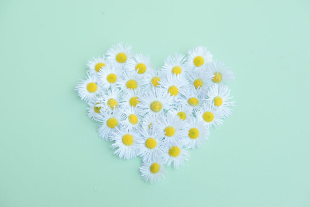 Открытка сердечком из ромашек, открытка днем