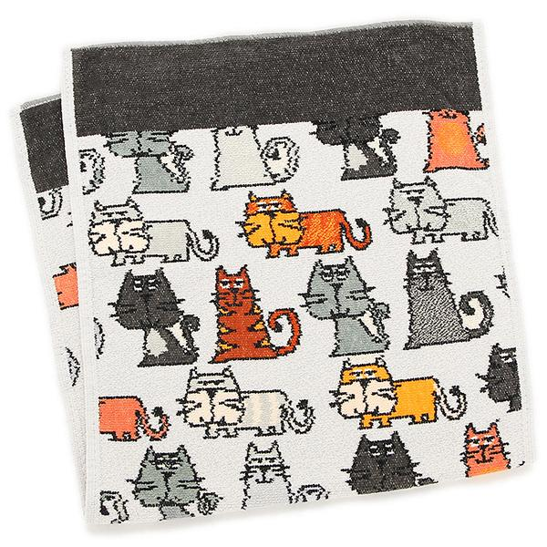fr-gt-cats-m-01-pl