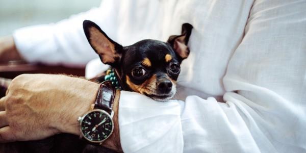 あなたの腕時計は大丈夫!?革ベルトを長持ちさせるコツ